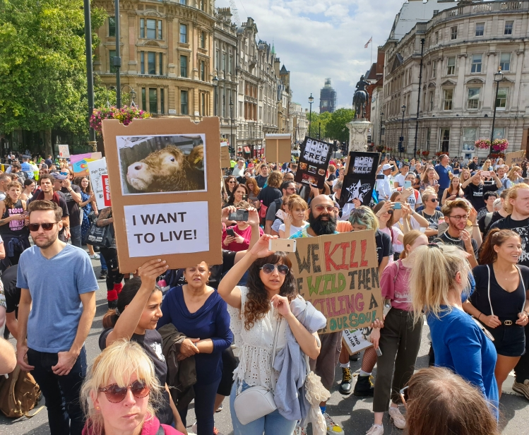 Animal Rights March London 2019