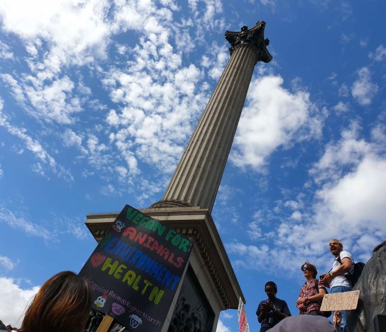 Animal Rights March London 2019, Trafalgar Square
